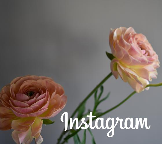 moubouquet instagram